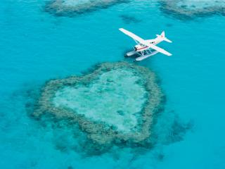 British Tourists Begin Lifetime of Love on Great Barrier Reef