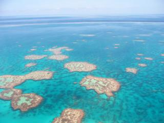 Great Barrier Reef More Than Accommodating