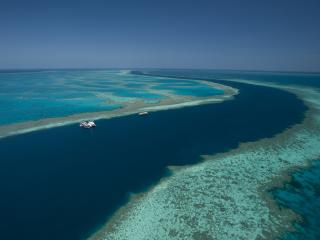 The Great Barrier Reef Goes Live On Twitter