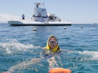 Reef Tour - Snorkelling