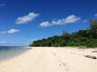 Green Island Cruises - Green Island Beach