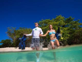 Green Island Cruises - Snorkelling