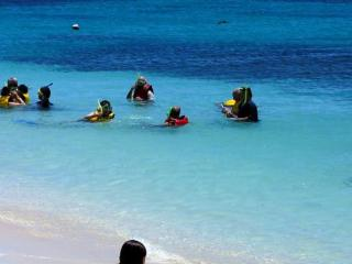 Beach and Snorkelling