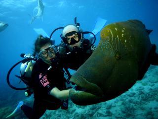 Moore Reef Scuba Diving